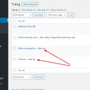 Hướng dẫn cách hiển thị tên Custom page template trong WordPress