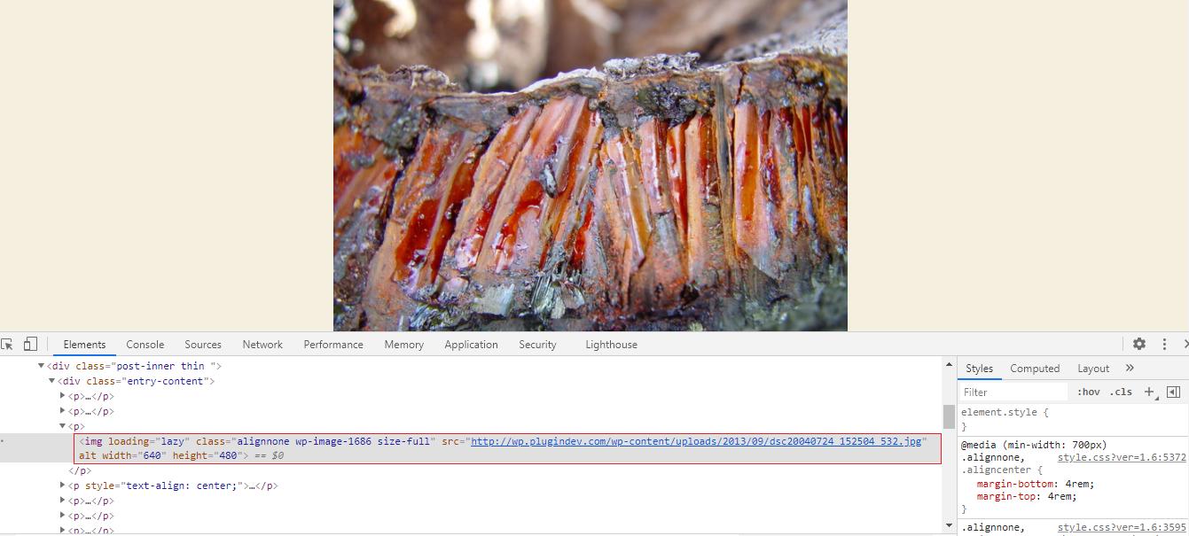 Hướng dẫn cách xóa Image Srcset trong WordPress ( Disable srcset )