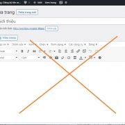 Hướng dẫn ẩn nội dung Editor của Bài Viết, Trang, Custom Post hoặc Template Page