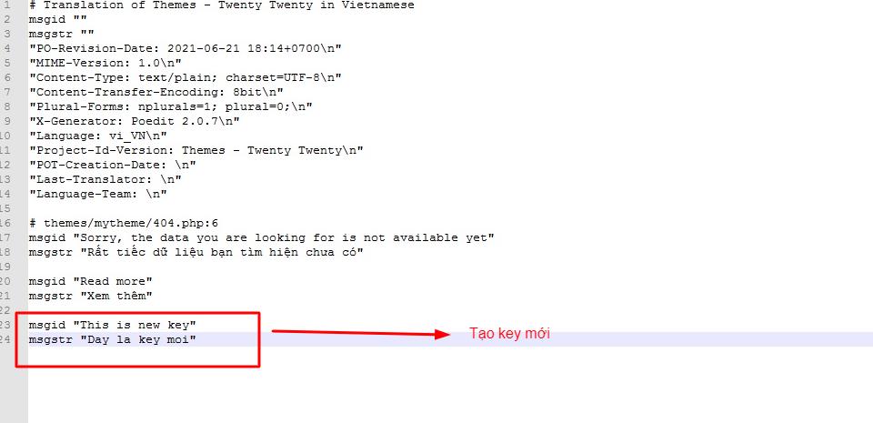 Hướng dẫn dịch ngôn ngữ trong Plugin và Theme WordPress